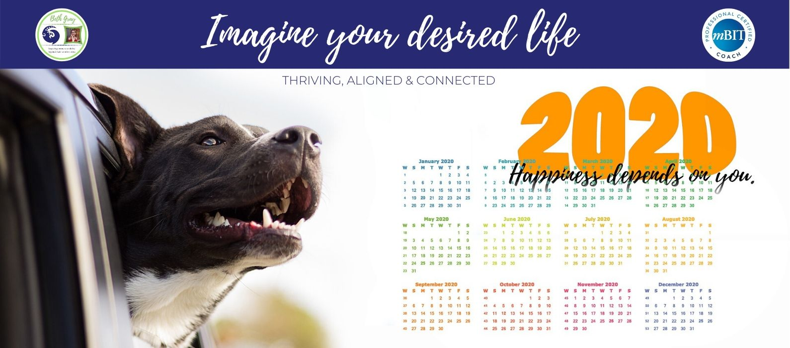 imagine your desired life, thriving, aligned, connected, how to create your perfect life, creating your perfect life